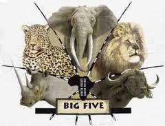 big five test gratis chatteside